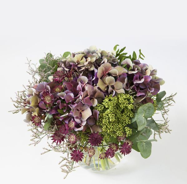 Hortensiadrøm fra Interflora. Om denne nettbutikken: http://nettbutikknytt.no/interflora-no/