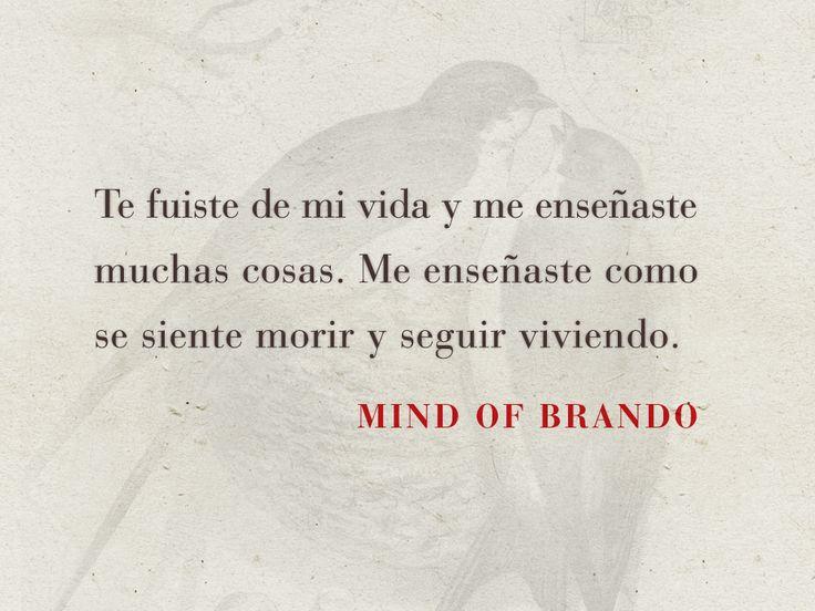 Mind of Brando http://www.mindofbrando.com/ página oficial