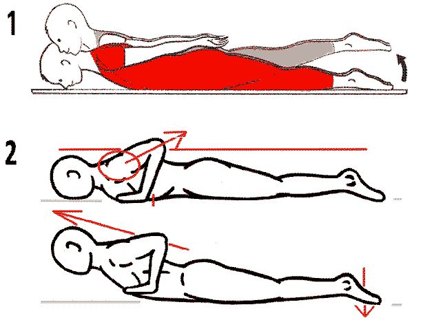 exercice de tonification dorso-lombaire contre le dos voûté