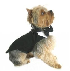 "$42.95 - The #FORMAL #BLACK #DOG TUX & TAILS will make your ""furry"" man look so handsome for your #wedding or special event.  Available in sizes XXS-3XL.   #PETS #doglovers #shop #dogs #gifts #fashion #puppies #weddingmarket #bridalmarket #brides #grooms #tuxedo #events #eventplanner #couture #ringbearer #groomsmen #bowtie #formal #cute #black #white"