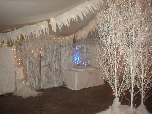 winter decorations | Here are some pictures of recent events which will give you a flavour ...