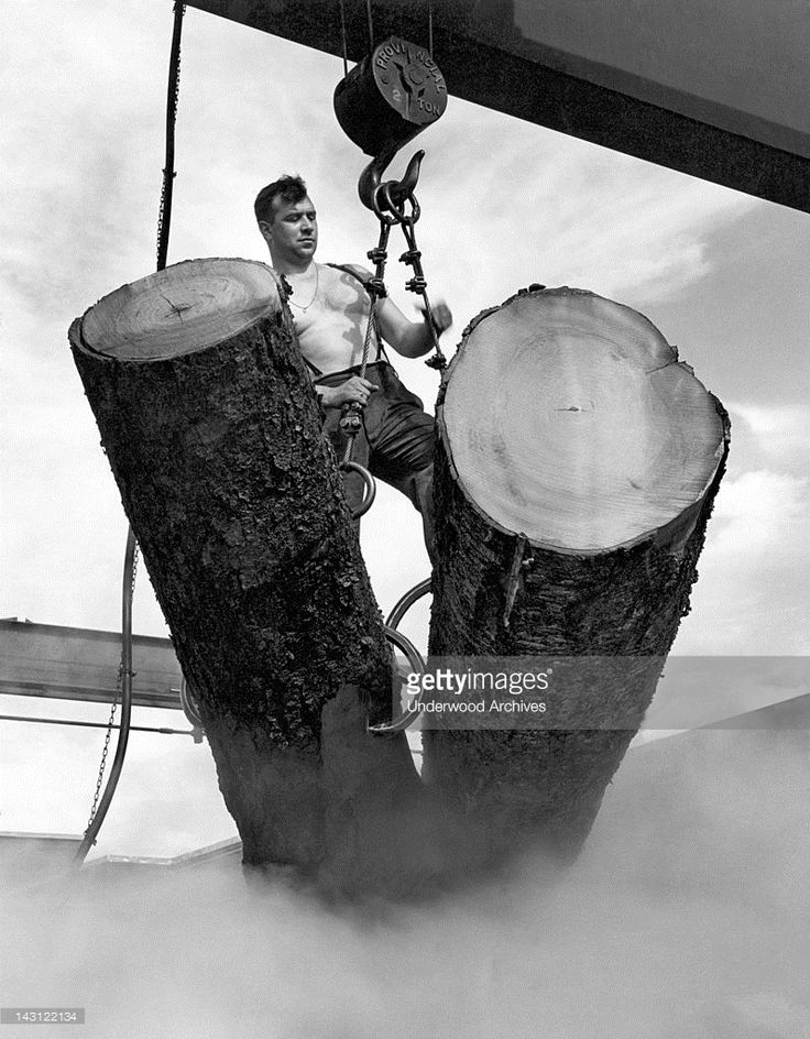 A worker in a pulp mill maneuvers logs to be steamed so the bark can be removed, Canada, 1956.