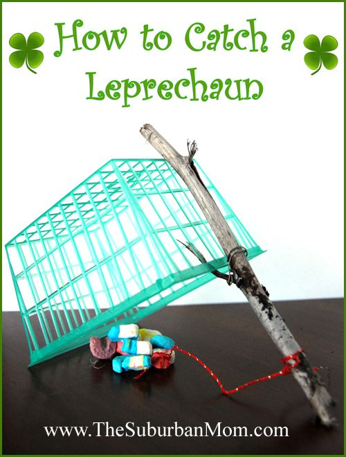 How to Catch a Leperchaun for St Patrick's Day