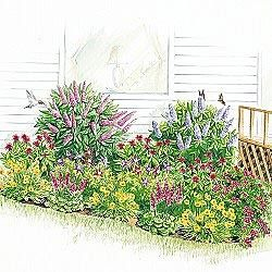 Butterfly+and+Hummingbird+Garden+Plans | Butterfly Hummingbird Garden