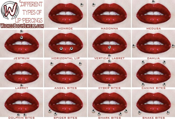 15 types of lip piercings. Seriously considering the medusa. Think its time to go see my guy at Platinum Ink...