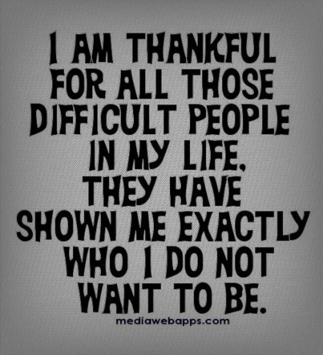I Am A Nice Person Quotes: I'm Thankful For All Those Difficult People In My Life
