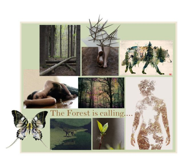 """""We all have forests on our minds......"" by artsdesireable ❤ liked on Polyvore featuring art, TheLittleNaturalist, mariegradypalcic, MollysMuses, Alkemia and barrettbiggers"