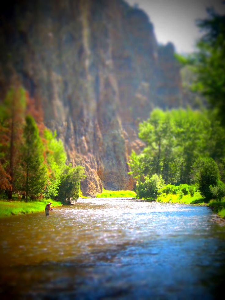 Fly fishing.. I want to fish here just so I can spend the day soaking in all of this beauty & tranquility. ❤