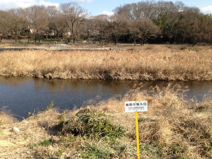 場所:越戸公園  座標:35.112756,137.191952  種類:公園  コメント:矢作川の支流に面しており、比較的穏やかな流れになっているため、この付近での川遊びは可能です。希少種なども多く見られるため、地元小学校ではこの場所での釣りとタモ使用の川の生き物教室が毎年行われています。天然記念物に指定されている川の生物もいるので、キャッチアンドリリースで自然を守ってくださいね。