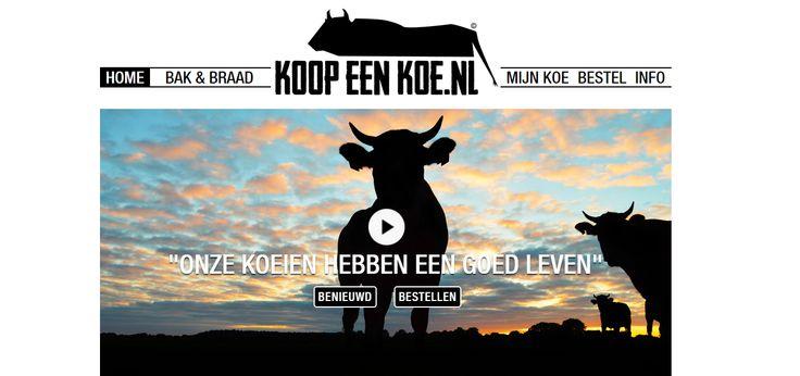 Koop een Koe: Duurzaam vlees - http://voeding.planetfem.com/koop-een-koe-duurzaam-vlees/ Ben je een vleeseter, maar zou je eigenlijk wel wat bewuster met vlees om willen gaan? Natuurlijk hoef je geen vegetariër te worden om toch duurzaam met de wereld om te gaan. Koop een Koe is daar een goed initiatief voor. Het lijkt een beetje gek, een koe kopen om vervolgens op te eten en dan z...