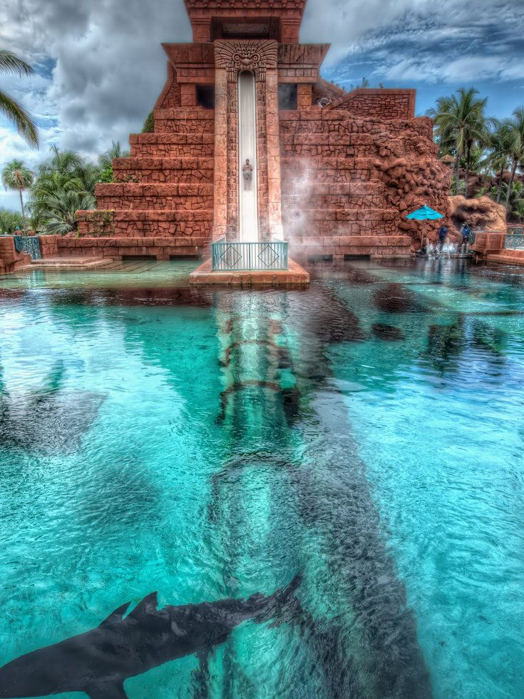 18 Best Images About Cool Swimming Pools On Pinterest