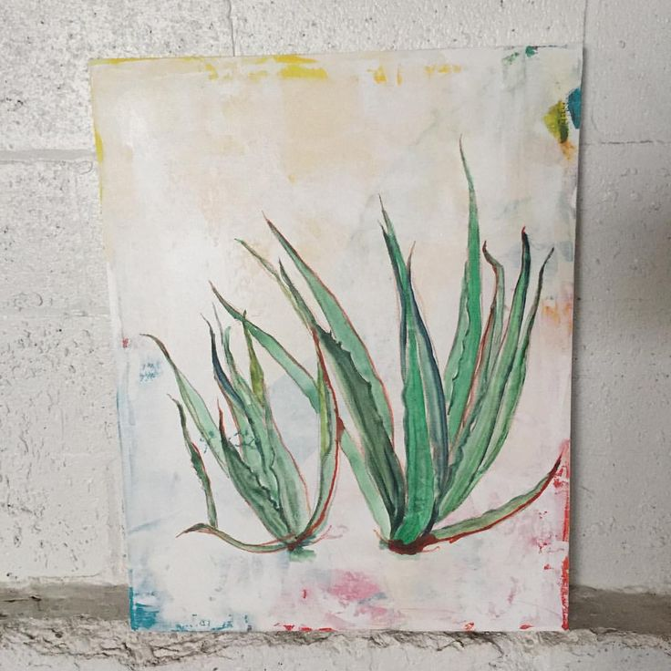 "80 Likes, 4 Comments - Mercury Project (@mercuryprojectsa) on Instagram: ""Back in the studio painting my fotos from #westtexas #artforsale #cacti #art #painting #inprogress"""