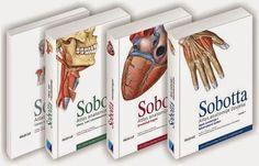 Atlas de anatomía humana Sobotta ; editado por F. Paulsen y J. Waschke  DISPONIBLE EN: http://biblioteca.uam.es/medicina/documentos/PRESTAMODIARIOMANUALES.pdf