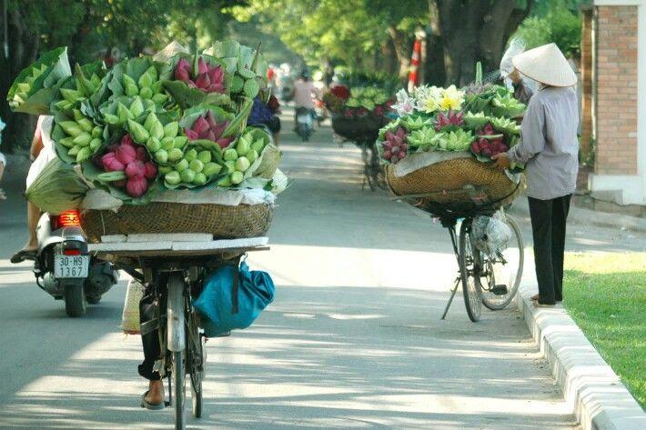 Les gens de Viêt-Nam travailleraient durs et sont très agréables