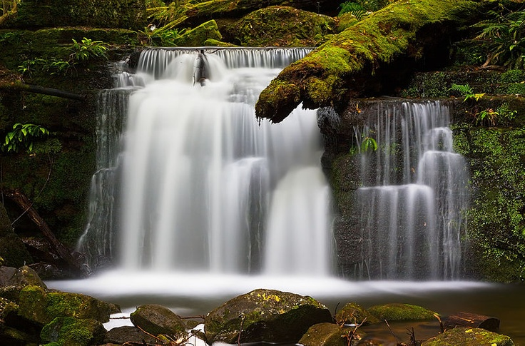 Strickland Falls, Tasmania, Australia by JJ Harrison, 8x ND Filter and Circular Polarizer: Neutral Density (ND) filters allow a photographer to limit light without reducing the aperture and then set the shutter speed according to the particular motion desired, in this case to blur the movement of the waterfall. http://en.wikipedia.org/wiki/Neutral_density_filter #Photography #ND_Filters
