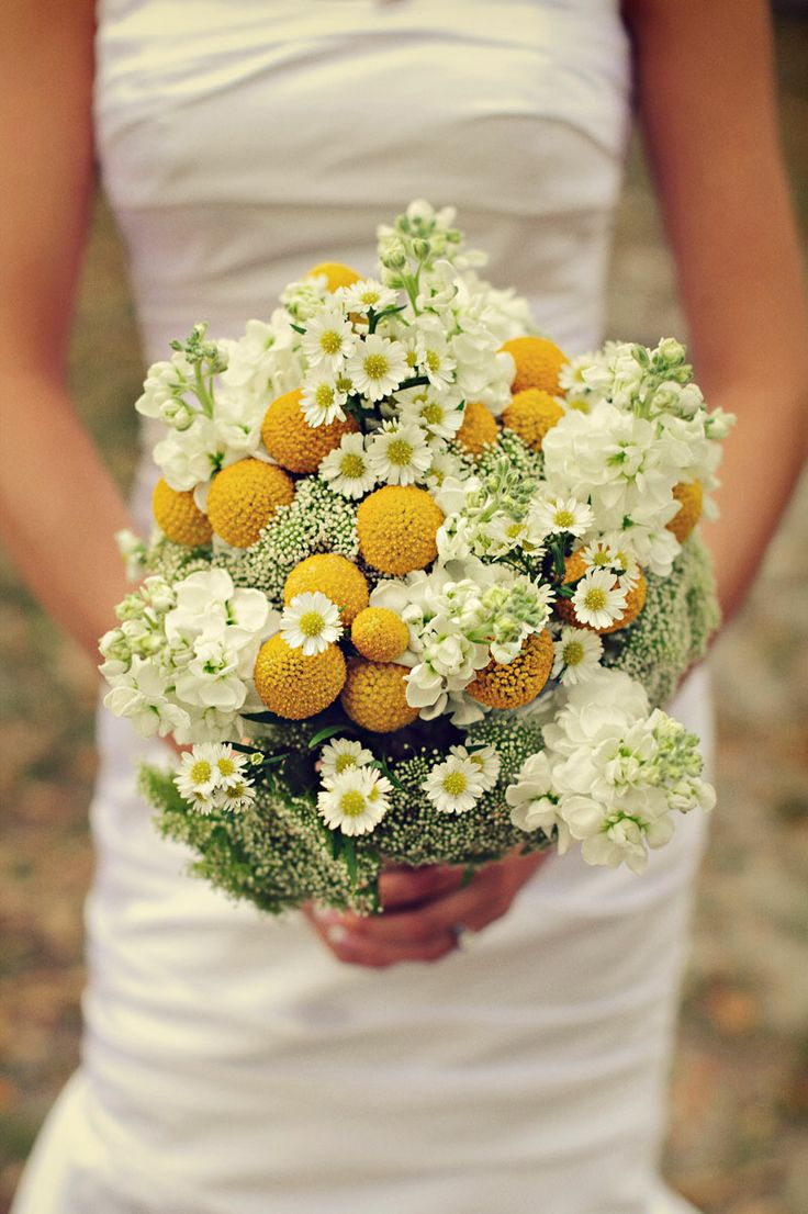 Love this bouquet of simple flowers - white stock, babys breath, yellow buttons and mini daisies.