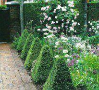 Einen Vorgarten zu haben ist bestimmt ein Vorteil, den wir hoch schätzen sollen und daraus Nutzen ziehen. Unsere schönen Bilder zur Vorgartengestaltung sind
