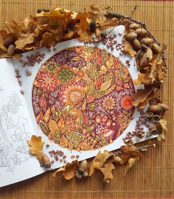 A Autumn Leaves Flew My First Coloring Of The Book Enchanted Forest