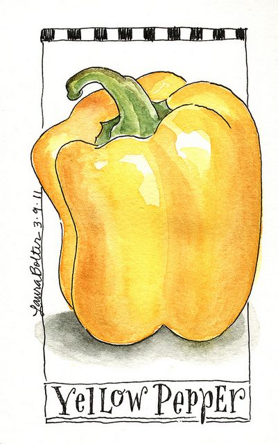 Sketchbook & Watercolor Journal Style Lesson One by Laura Botler via Flickr