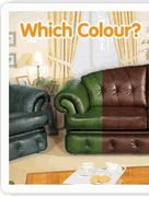 12 best dye leather furniture images on Pinterest | Leather ...