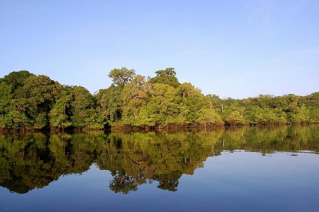 Rio Negro, Amazônia by adventuresinbrazil.com, via Flickr