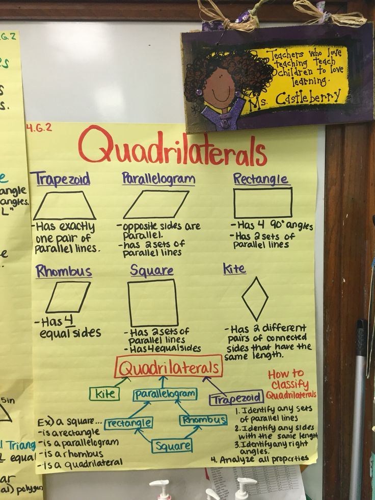 4.G.2 Classifying Polygons Types of Quadrilaterals Polygons