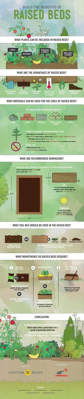 Raised beds are the perfect way to start your own garden. Fruits, vegetables, flowers and shrubs can all thrive in the raised bed environment. The popularity of raised beds is on the rise because of their many benefits – reduce soil erosion, the ease of access to control weeds and pick...