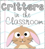 25+ best ideas about Classroom pets on Pinterest | Ks1 classroom ...