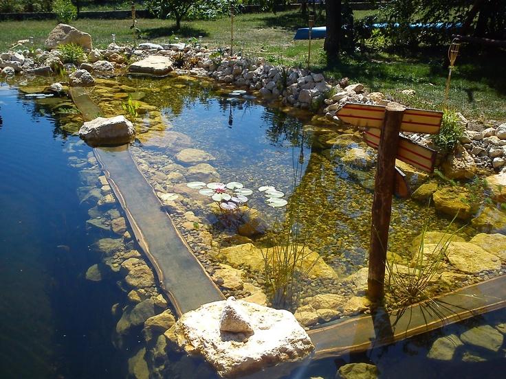 Mejores 109 im genes de albercas en pinterest piscinas for Piscina sustentable