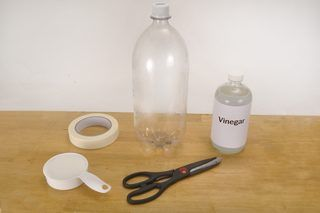 How to Use Vinegar to Kill Gnats (4 Steps)   eHow