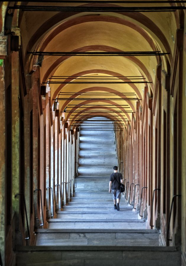 Bologna, the city of tower and porticoes.