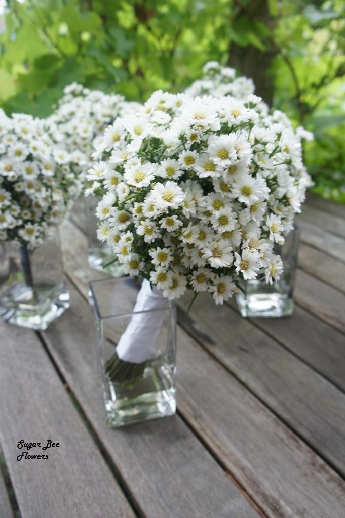 daisy bouquet... bridesmaids?