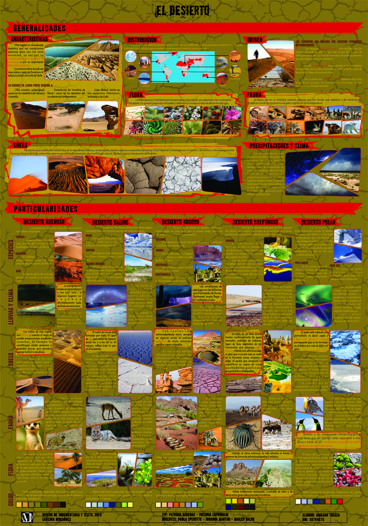 TP 4 Texturas - Panel informativo-analítico Desierto 1