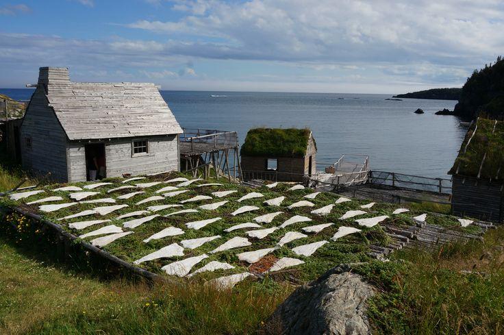 Random Passage Set, Newfoundland.