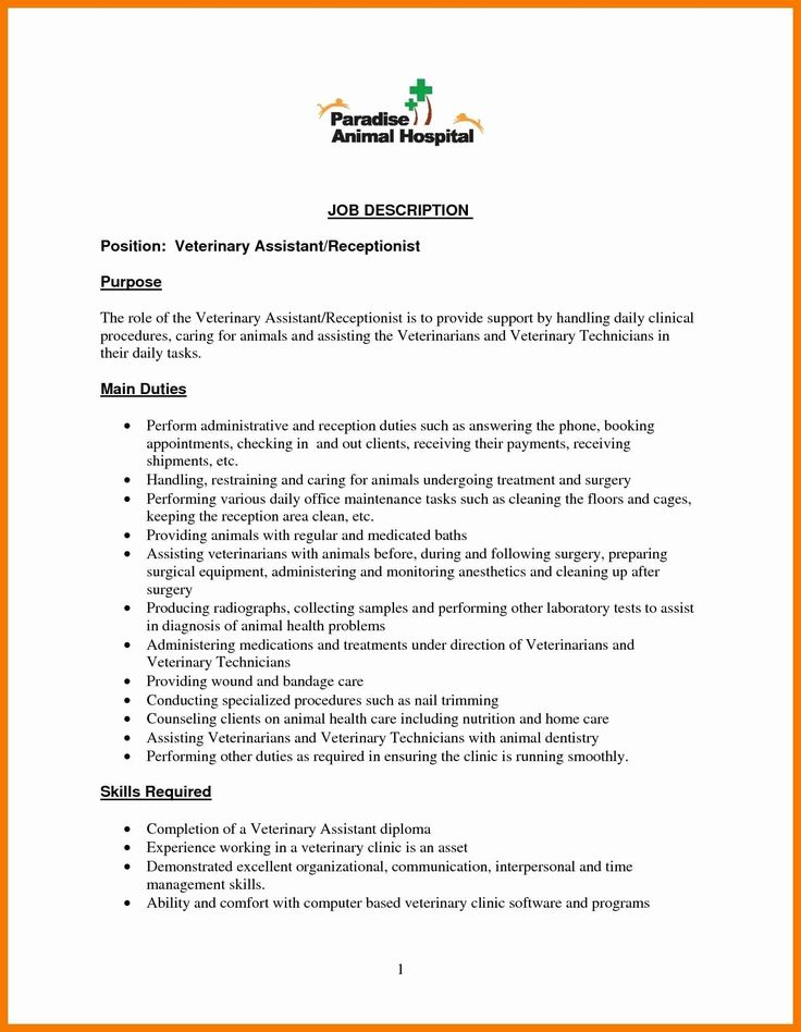 20 Dental Receptionist Job Description Resume