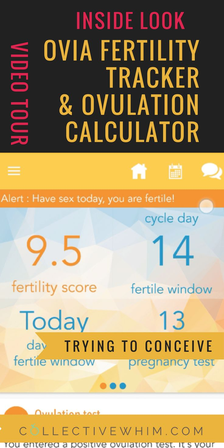 IVF Pregnancy calculator