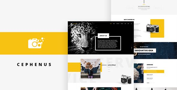 Cephenus - Photography PSD Template. Fullview: https://themeforest.net/item/cephenus-photography-psd-template/16273761?ref=thanhdesign