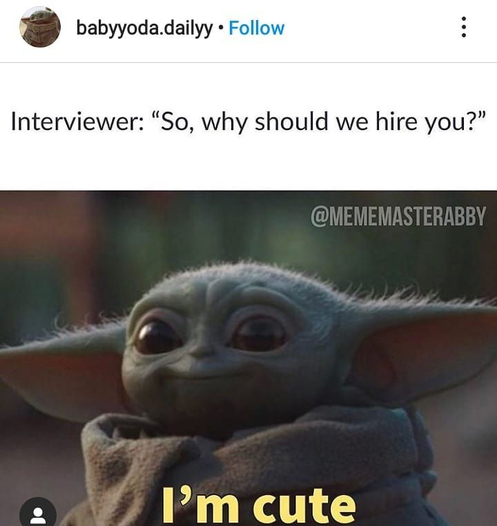 Instagram Memes On Instagram Thats The Best Answer To A Job Interview Follow Funnyestnameever Follow Funnyestnameever Yoda Funny Yoda Meme Yoda Movie
