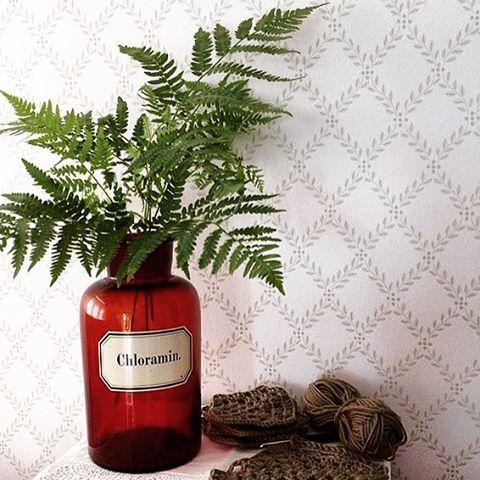 """""""Det är Wallpaperwednesday och dagens inspiration hämtar vi hos @ramawatt! Ormbunke + tjusig vas + tapet Trellis Leaves från Falsterbo II = perfect match…"""""""