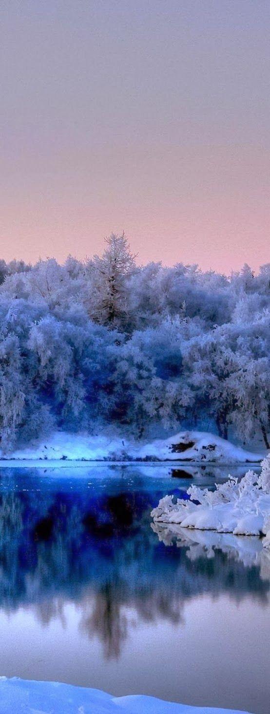 Stillness in Blue