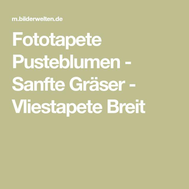 Fototapete Pusteblumen - Sanfte Gräser - Vliestapete Breit