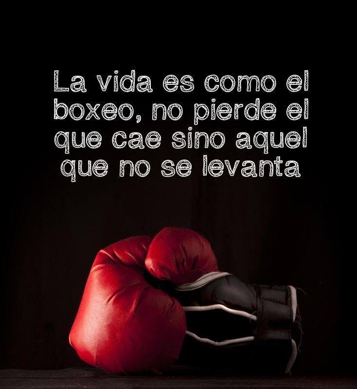 〽️ La vida es como el boxeo, no pierde el que cae sino aquel que no se levanta