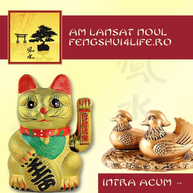 Am lansat noul www.fengshui4life.ro! Produsele tale preferate sunt disponibile acum si pe mobil: • 1700 de produse Feng Shui • Sfaturi si beneficii Feng Shui • Livrare gratuita in toata tara • Retur fara costuri suplimentare Te asteptam: www.fengshui4life.ro