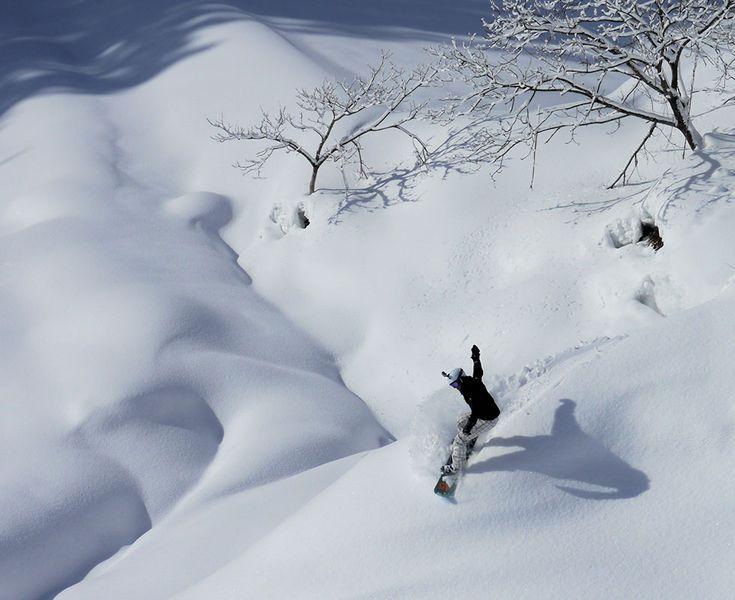 Myoko Kogen, Japan Ski Packages, Holidays & Tours   Powder Recon