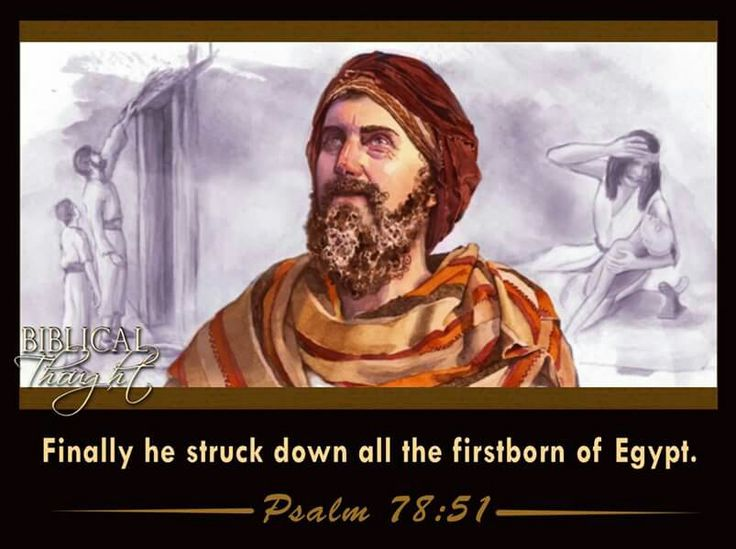 Finally he struck down all the firstborn of Egypt. - Psalm 78:51.
