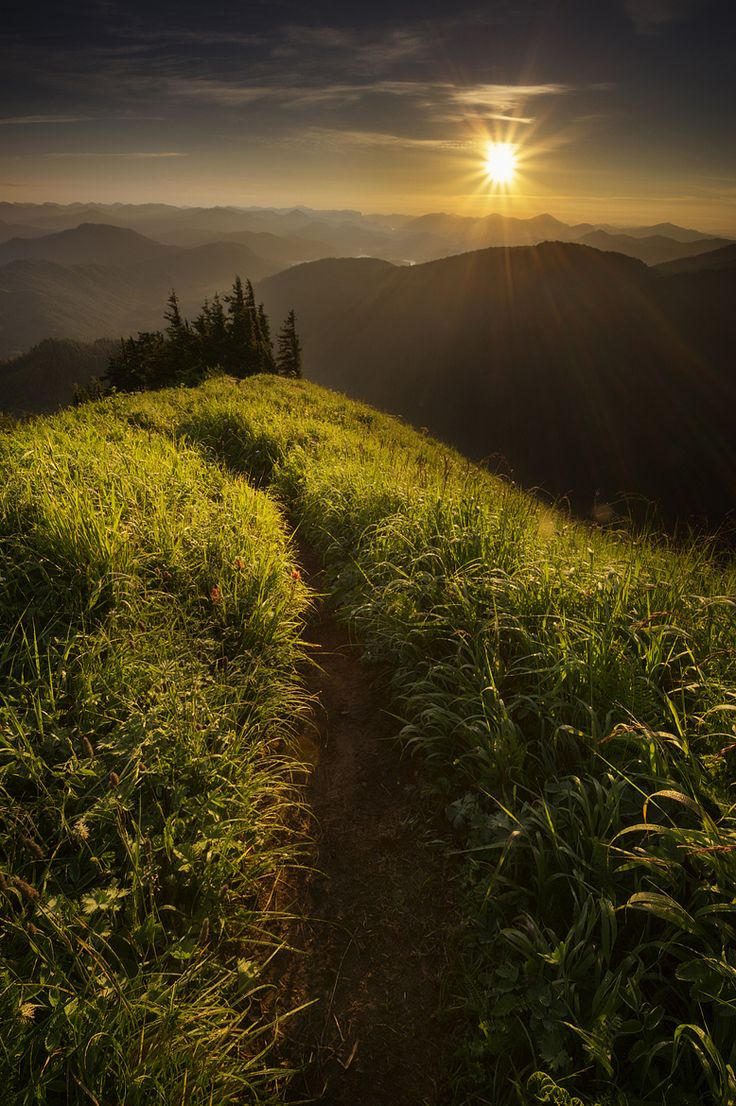 Ethereal landscapes nature photography by donna geissler - Photograph The Path By Carlos Rojas On 500px Amazing Photographylandscape