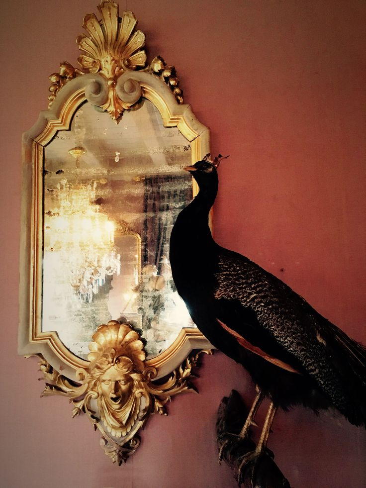 Antique mirror, guidling, gold, peacock, vintage, interior