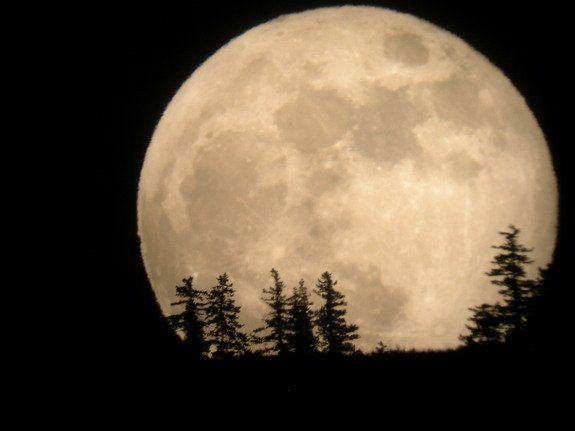 Spectacular 'Supermoon' Wows Skywatchers Around the World : So, so awesome