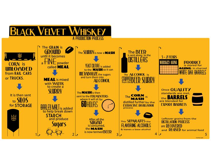 Infographic - Black Velvet Whiskey