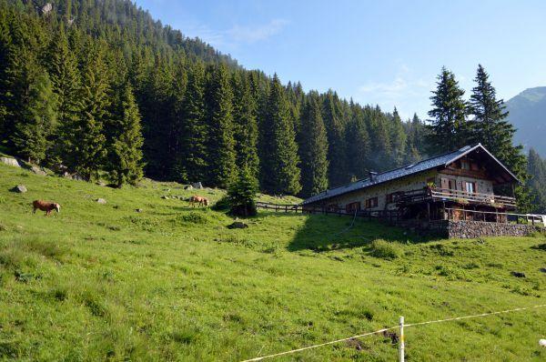 Nel cuore selvaggio del Lagorai: Girovagando in Rrentino